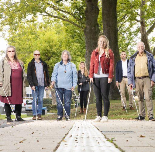 Geleidelijn met daarachter een groep mensen met taststok
